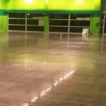 Commercial Unit - Polished Concrete Floor