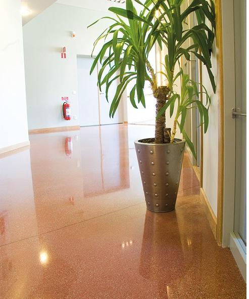 Reception Area - Polished Concrete Floor